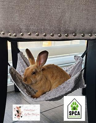 Hammac pour lapin Lylou Design